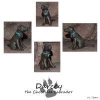 Chocolate Labrador Sculpture by wolfysilver