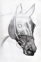 Eventer WIP 2 by Scotston