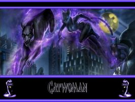 MK vs DC Catwoman WP by Superman8193