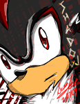 Shadow the Hedgehog by Su5anLee