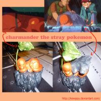 Charmander the stray pokemon by Kewppy