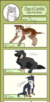 DoC MSE :: Sonja's Hypo-Pups! by DragFairy