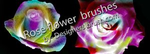 Rose flower brushes by designersbrush