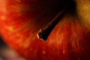 Red apple... by AgataSwat