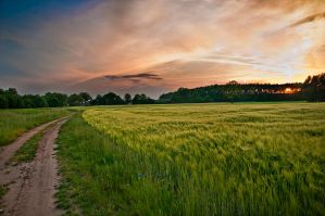 Poland-amazing walking by PatiMakowska