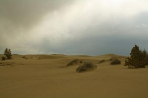 Storm Over The Sands by Thundercatt99