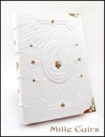 Assassin's Creed book by MilleCuirs
