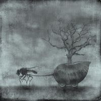 the fly by the-surreal-arts