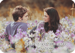 Edward and Bella Action by Lex-Bree