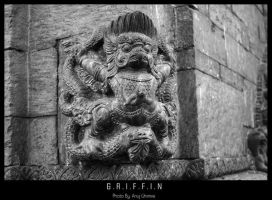 Griffin by darklord977