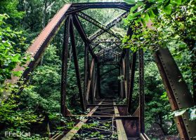 Abandoned train bridge by FFeLKat