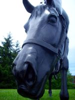 Horseface by EpicPseudonym