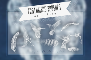 +Feathbirds Brushes. by Upwithebirds