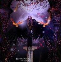 Dark Wings by Fae-Melie-Melusine