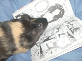 boehie  reading  sdk  manga by loverkyo
