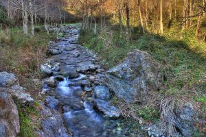 Little river - HDR by yoctox