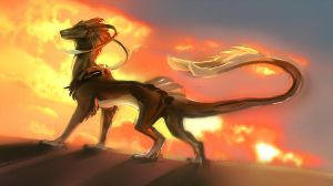In the sunset + video! by Silverbloodwolf98