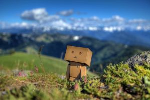 Danbo at Hurricane Ridge 2 by alexquick