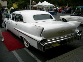 1958 Fleetwood Limo - Fins and Bunnies Special by RoadTripDog