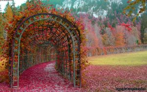 Fall at Ludvigs Palace by pjc10