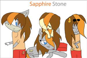Sapphire Stone (In ALL her forms) by ThunderXLeaf
