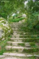 Stairway of Nature by MissLoony