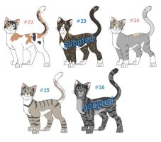 Cat Adoptables Litter 6 CLOSED by funlakota
