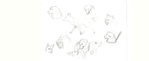 Random Canine Sketches and Hyena by AshesAshesFalling