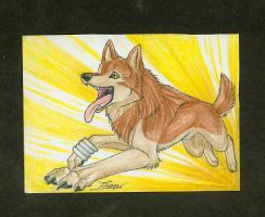 ACEO-Toboe by itsmar