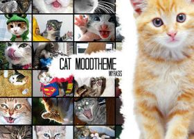 Cat Moodtheme by draconis393
