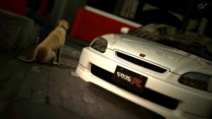 GT 5: Photo 1 by ICK369