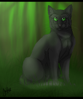 Hollyleaf of ThunderClan by TheMoonfall