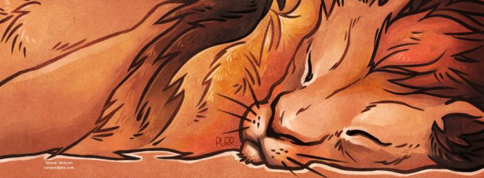 Sleeping lion by ChaconTilune
