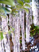 Icicles by untitledharmony