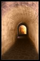 Another tunnel by rosebud10
