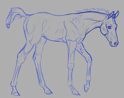 Foal Maker WIP by JNFerrigno