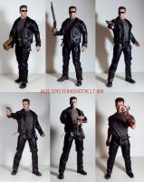 Hot Toys Terminator 2 T-800 by Unicron9