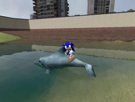 Sonic Dolphin Surfing by SonAmyAlways