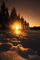 Golden Snow by Nitrok