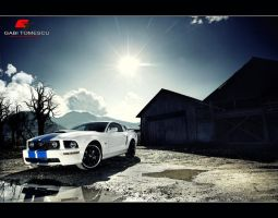 mustang gt 500 by gtimages