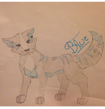 Blue the wolf by Nightwave-Artist