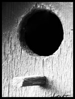 hole in a frame by D-u-D