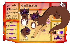 Blindstar Application Sheet [TDC App V2] by WarriorRainyDay