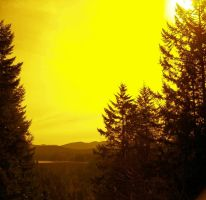 Yellow Filter by josiewolhart