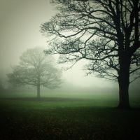i told to the mourning tree by RickHaigh