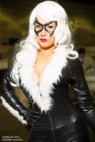 The Black Cat Felicia Hardy Rian Synnth by wbmstr