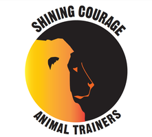 Animal trainer logo colored by tritie