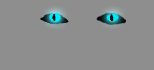 Blinking Cat eyes by FafnirtheDragonLord
