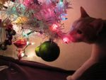 Ornament Napper by calley14