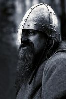 Viking by MuratMiregil